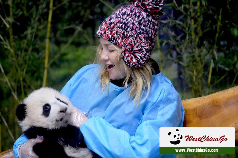 chengdu-panda-holding-0126c1