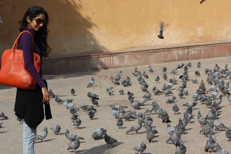 Amer Fort & Palace