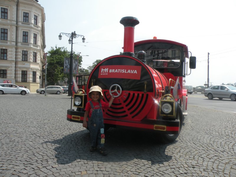 Toy train to the castle
