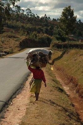donna che trasporta rami secchi