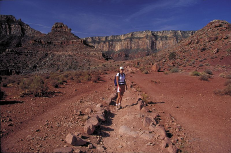 Bo in Grand Canyon