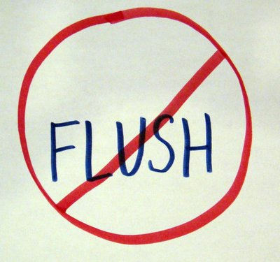 5__Flushing.jpg