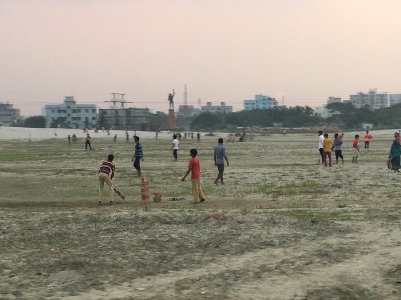 large_cricket.jpg