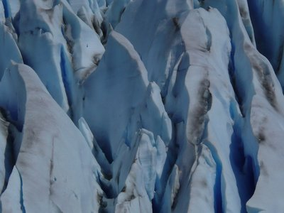 Close up of Glacier Grey expertly taken by Lisa B