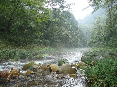 The Whip stream, Zhangjiajie