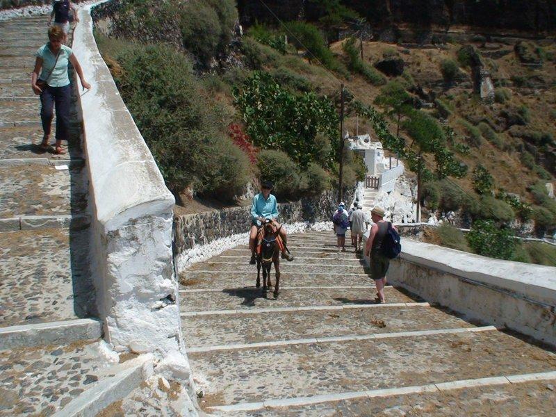 Santorini - Donkey Days 2