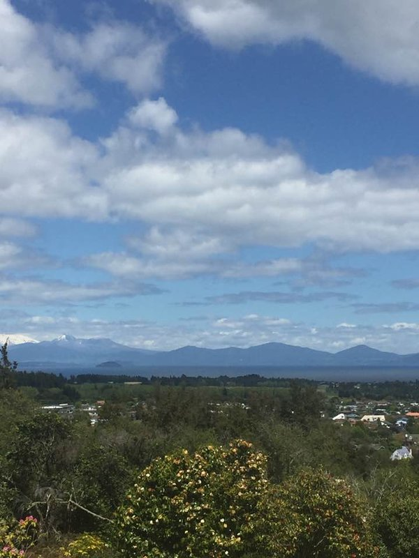 Waipahihi Botanical Reserve - Views over Taupo at the lookout