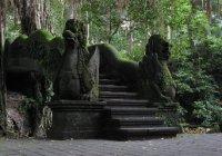 Bali_1_019-1.jpg