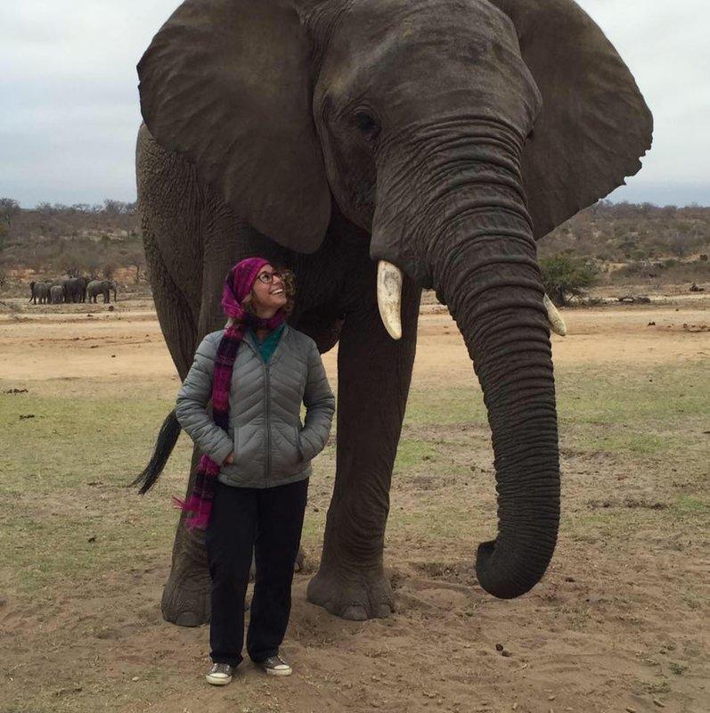 My Elephant Friend