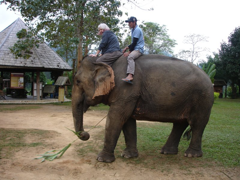 Chris and the Elephant