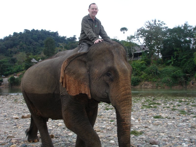 Mahout in training