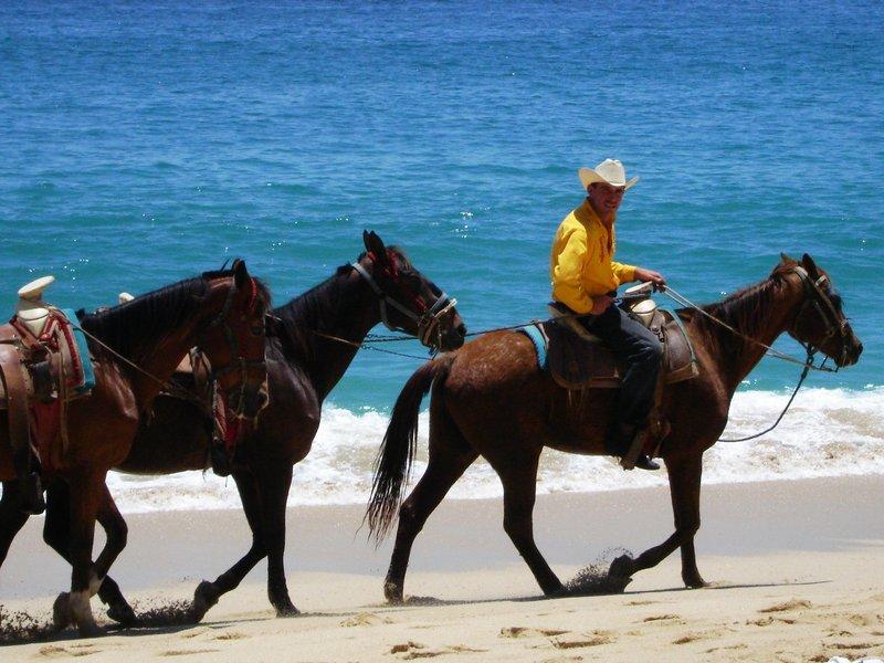 Horseback Riding in Cabo