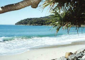 Noosa Beach - Noosa Heads