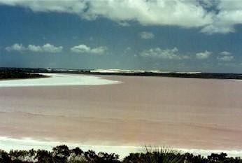 Pink Lake Esperance - Esperance