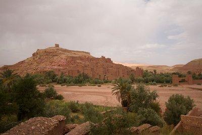 178_Desert_Day1.jpg