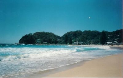 Avoca Beach Pix - Avoca Beach