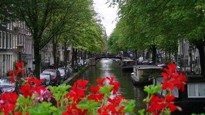 203402395907392-aussirose_lo.._Amsterdam.jpg