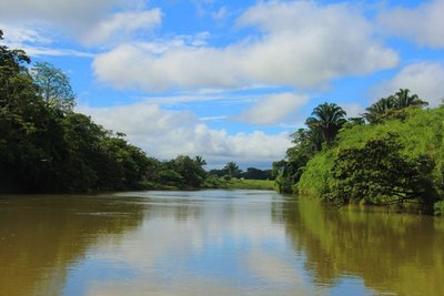 203_Belize_-_River.jpg