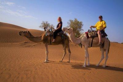 211__Desert_Day4.jpg