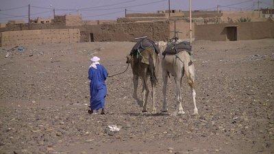 214_Desert_Day4.jpg
