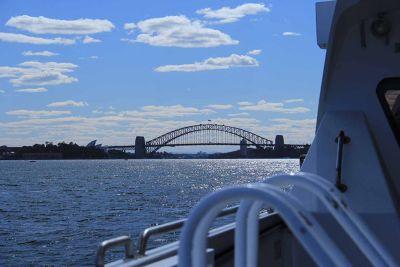 319480277715238-VT_Meet_Wats..ose_Sydney.jpg