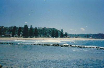 Avoca Beach - Avoca Beach