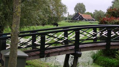 5908943-A_Day_trip_to_Zaanse_Schans_Amsterdam.jpg