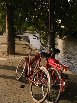 611393275908791-aussirose_av.._Amsterdam.jpg