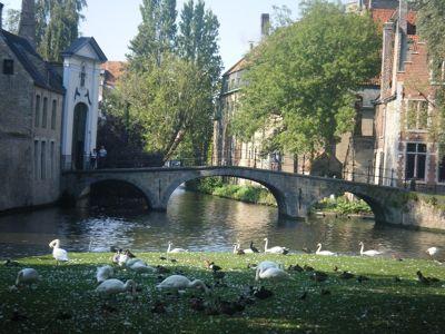 640615525964401-Walking_arou..ose_Brugge.jpg