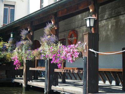 690418665964434-Beautiful_Br..ose_Brugge.jpg