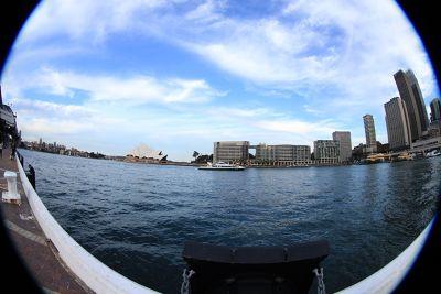 7714787-Sydney_Harbour_Circular_Quay.jpg