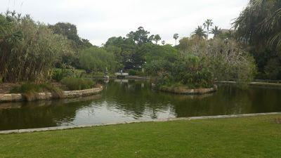 7714802-Sydney_Botanical_Gardens_By_Aussirose.jpg