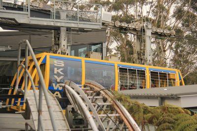 7733113-Scenic_Railway_Katoomba.jpg