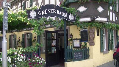 787288215941226-Gruner_Baum_..ich_Winkel.jpg