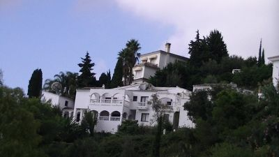 929466446046039-White_houses..rose_Ronda.jpg