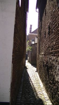 977082235945190-Beguinage_in..irose_Lier.jpg