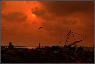 Fishing_Nets_favourite_1.jpg