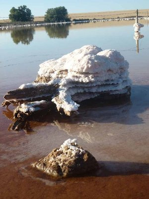 Pink_Lake_..n_Australia.jpg