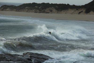 Tip_-_Prevelly_Beach_5.jpg