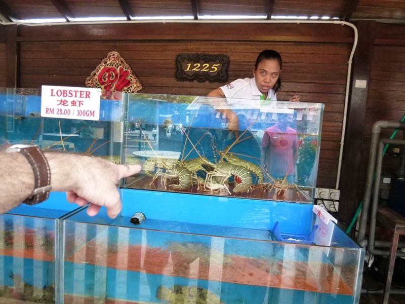Howie picks out huge lobster at Orkid Ria Cenang - Pulau Langkawi