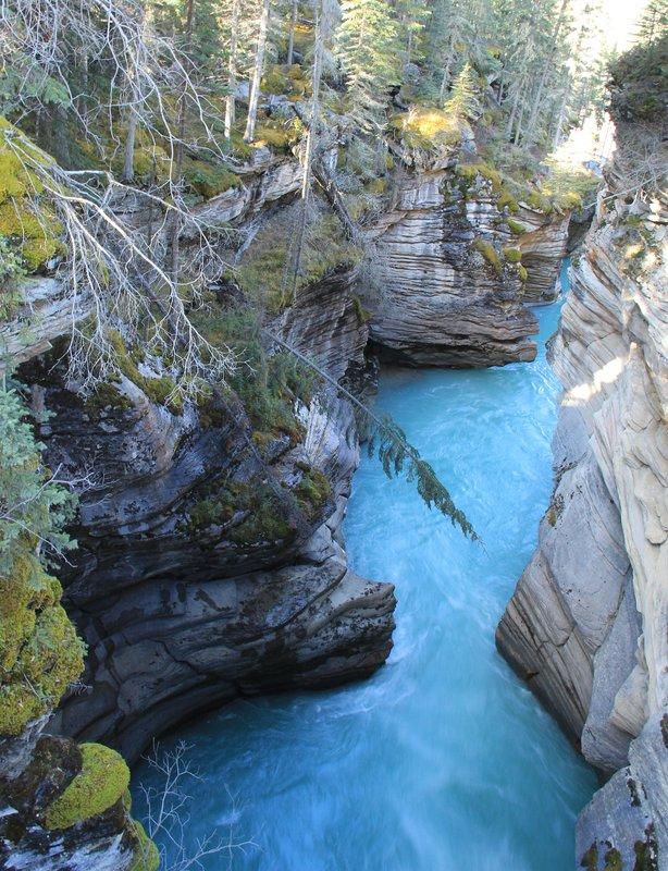 Jasper - Athabasca Falls