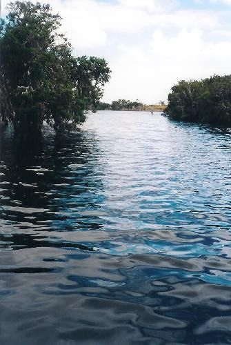 Monjingup Swamp Esperance - Esperance
