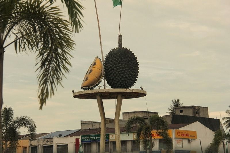 Durian Roundabout on trip with DaHongHua - Penang