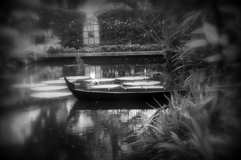 Spice Gardens penang by aussirose - Penang