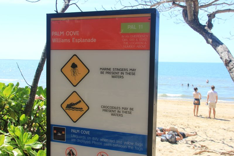 Jellyfish warning sign North QLD - Cairns