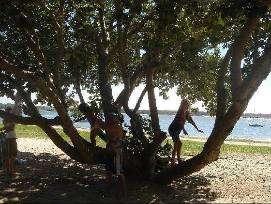 Bribie Island - Brisbane