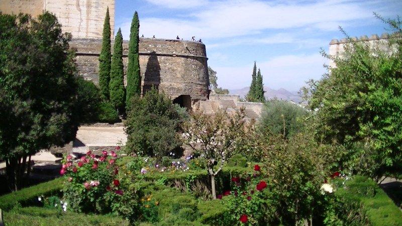 260 Alhambra