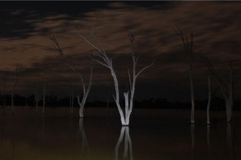 Light painting photography at Boshack by aussirose - Toodyay
