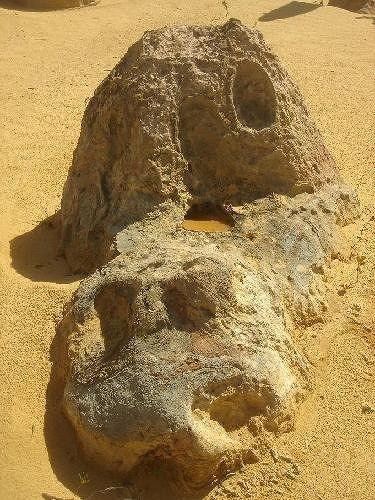 Dog rock Pinnacles - Cervantes