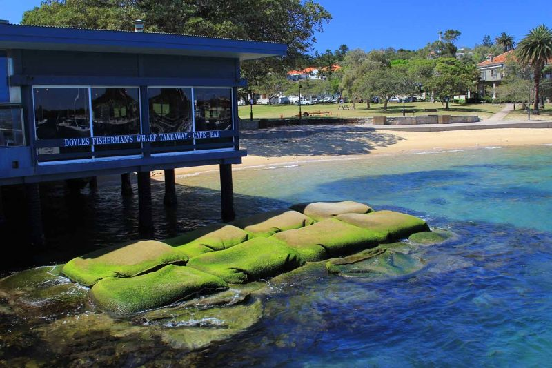 Ferry to Watsons Bay by aussirose - Sydney